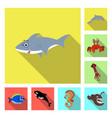 sea and animal logo set of vector image