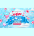 spring sale banner with cherry blossoms flowers vector image