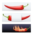 Hot Pepper pattern food banners vector image