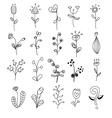 flowers different style doodle set vector image