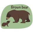 Grizzly bear whith child vector image