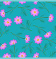 pink cosmos flower on indigo blue background vector image vector image