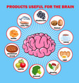 products useful for brain vector image vector image