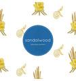 sandalwood flower for king seamless pattern vector image vector image