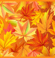 seamless pattern with autumn yellow leaves aging vector image vector image