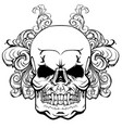 skull with elements a vegetative ornament vector image vector image
