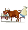 A bull in a China shop vector image vector image