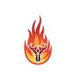 fire bull skull logo icon concept vector image