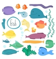 Tropical fish collection isolated vector image