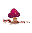A colony of ants near the mushroom vector image vector image