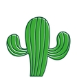 cactus plant nature icon vector image vector image