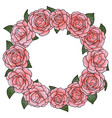 camellia round frame vector image