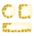 Maple leaves banners and buttons with a maple vector image vector image