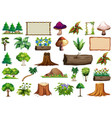 set nature object vector image