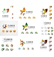 Set of company logotype branding designs flower vector image