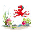an underwater landscape with squid and plants vector image