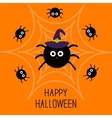 Cute cartoon fluffy spider set on the web Witch vector image vector image