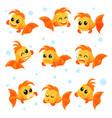 cute goldfish set funny fish cartoon characters vector image vector image
