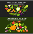 healthy organic food promotional poster with fresh vector image vector image