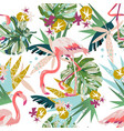 pink flamingo seamless pattern isolated on white vector image
