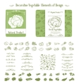 vegetables and swirl for design vector image