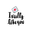 i really like you hand written typography poster vector image vector image