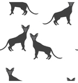 Seamless Pattern of a Cat Silhouettes vector image vector image