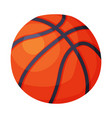 basketball ball sport equipment vector image