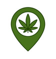 marijuana leaf and map pointer vector image vector image
