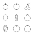 Orchard fruits icons set outline style vector image vector image