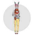 retro hipster animal rabbit with photo camera vector image