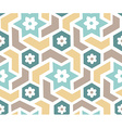 arabian pattern vector image