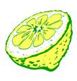 cartoon image of half melon vector image vector image
