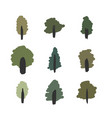 isolated summer forest tree simple icons vector image vector image