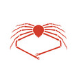 japanese spider crab vector image vector image