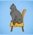 male cat sits on chair pop art vector image
