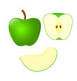 set of green apple and cut in half apple and vector image