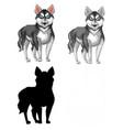 set siberian husky vector image vector image