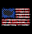 united states america vector image vector image