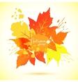 Watercolor foliage vector image