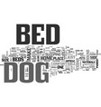 a perfect bed for your pet dog text word cloud vector image vector image