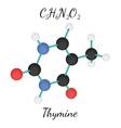 C5H6N2O2 Thymine molecule vector image vector image
