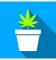 Cannabis Pot Flat Long Shadow Square Icon vector image
