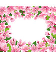 cherry blossom background pink spring flowers vector image vector image