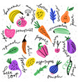 fruits and veggies vector image vector image