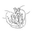 heart in hands health symbol medicine human hand d vector image