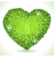 Holly Leaves Heart Placeholder Isolated on White vector image vector image