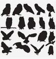owl silhouettes vector image vector image