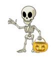 skeleton cartoon mascot hold halloween pumpkin vector image vector image