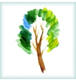 watercolor green tree vector image vector image